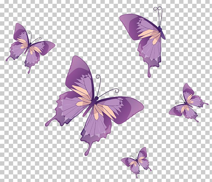Butterfly Nymphalidae PNG, Clipart, Brush Footed Butterfly.