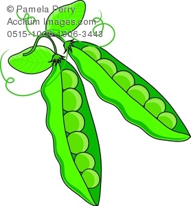Clip Art Illustration of Peas in Their Pods.
