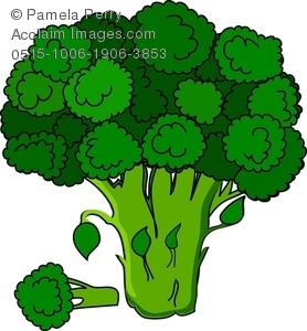 Clip Art Illustration of a Broccoli Crown.