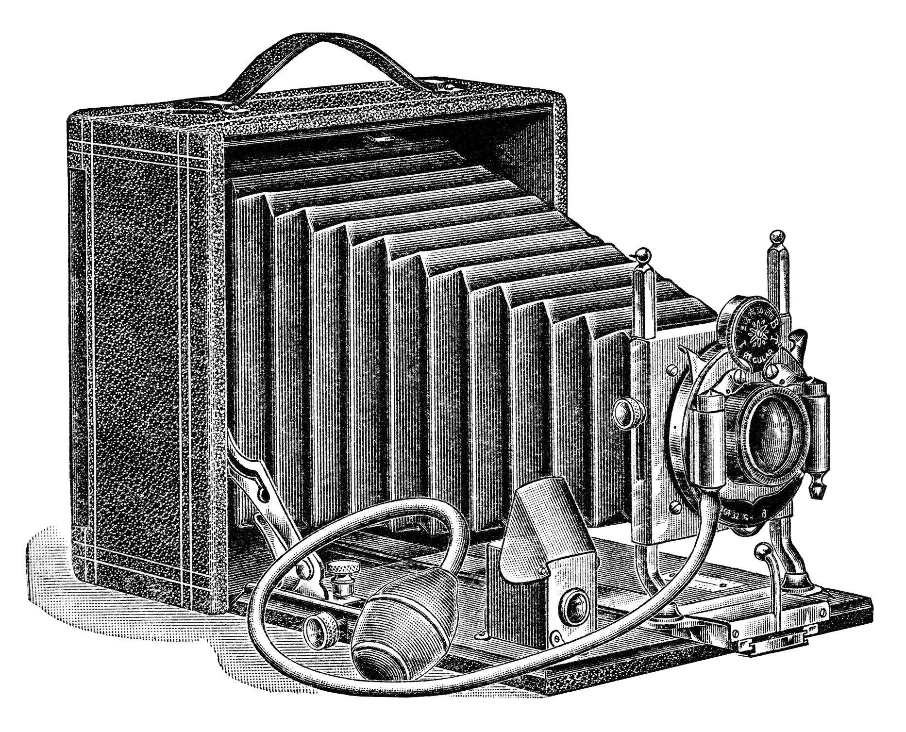 1907 clipart #21