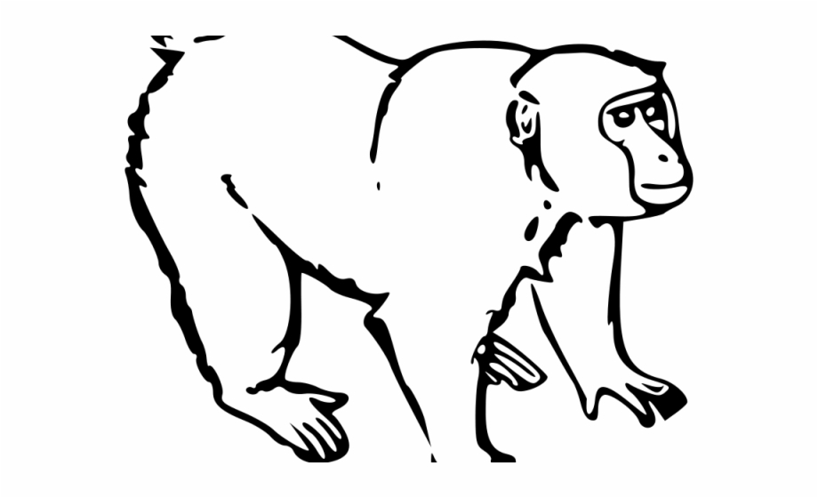 Howler Monkey Clipart Outline 7 1200 X 1920 Free Clip.