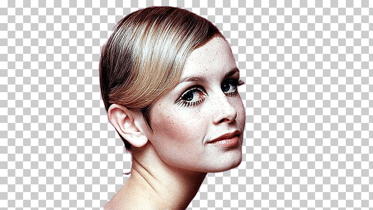 Twiggy 1960s 1950s Cosmetics Fashion, others PNG clipart.