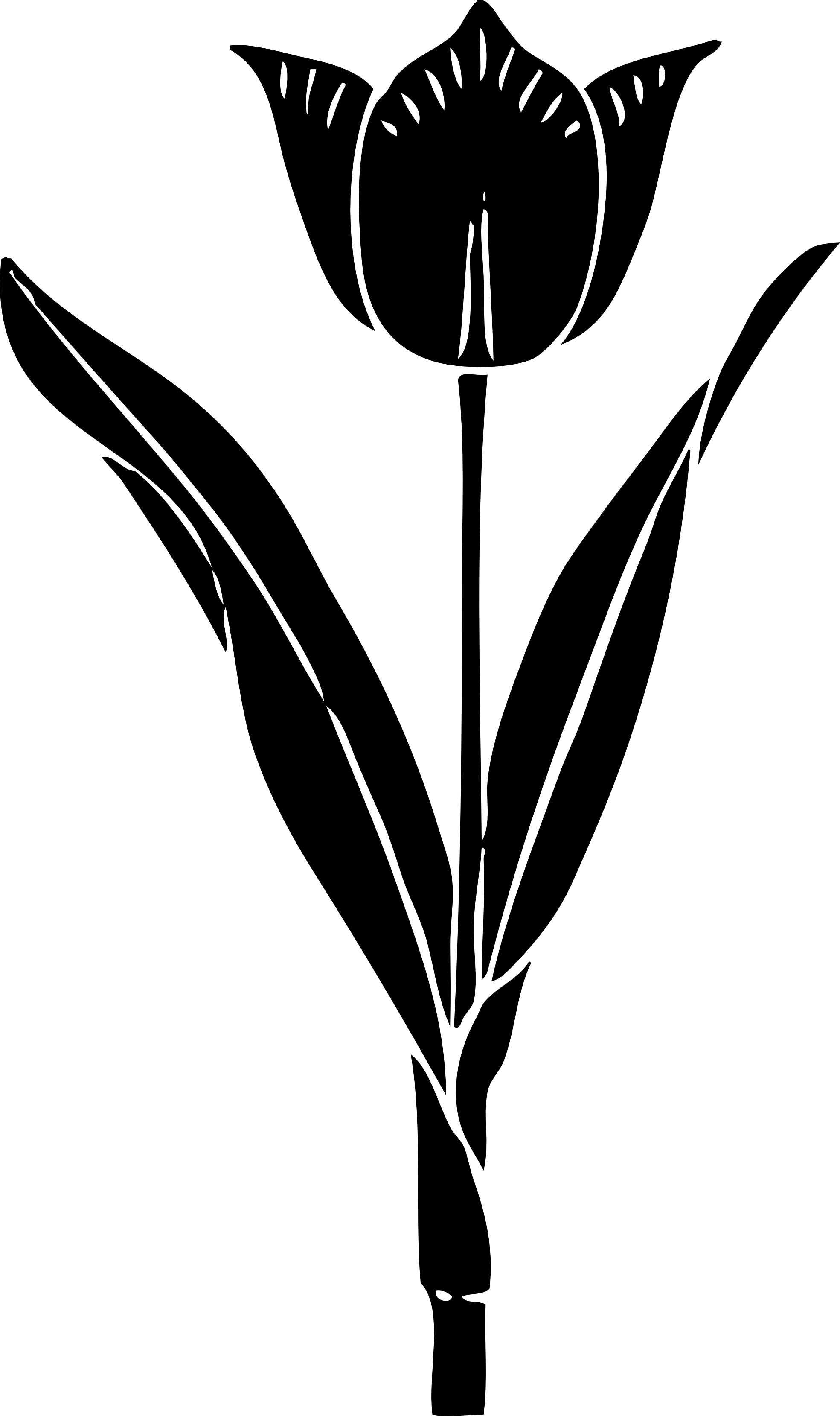 Tulip Silhouette Drawing Clip art.