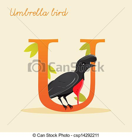 Umbrella bird Clipart and Stock Illustrations. 1,981 Umbrella bird.