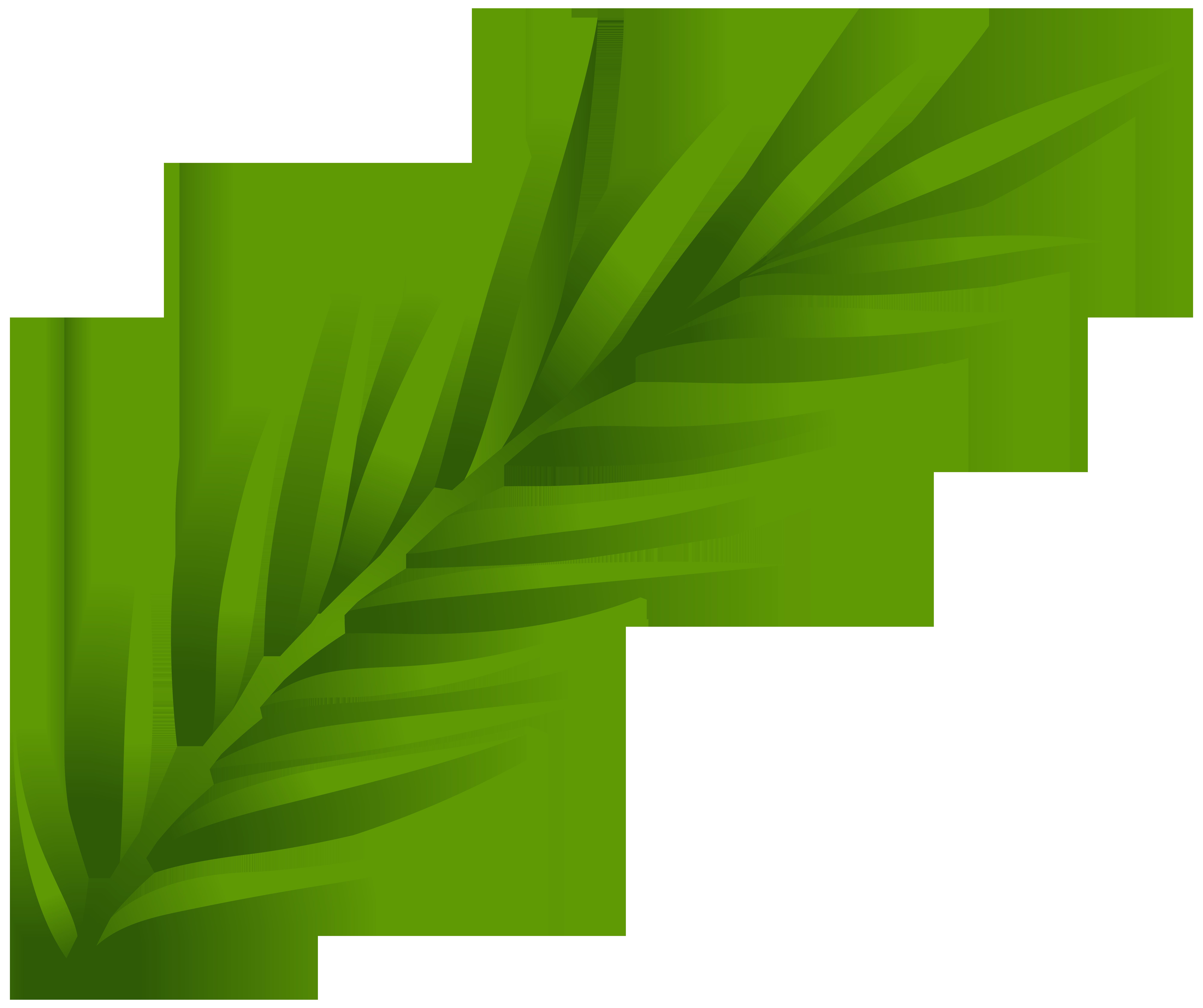 Leaf PNG Clip Art.