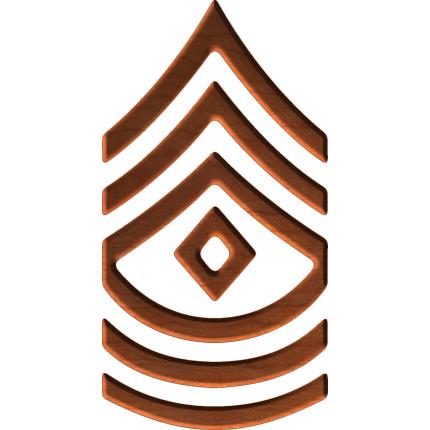Glassdoor Company Rankings: Army First Sergeant Rank.