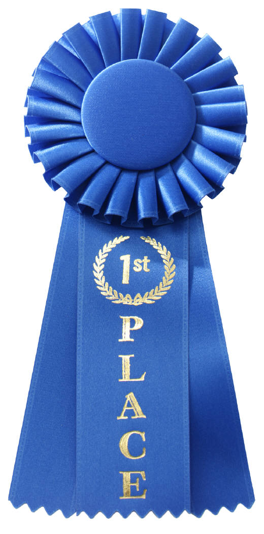 First Place Blue Ribbon Clip Art N3 free image.
