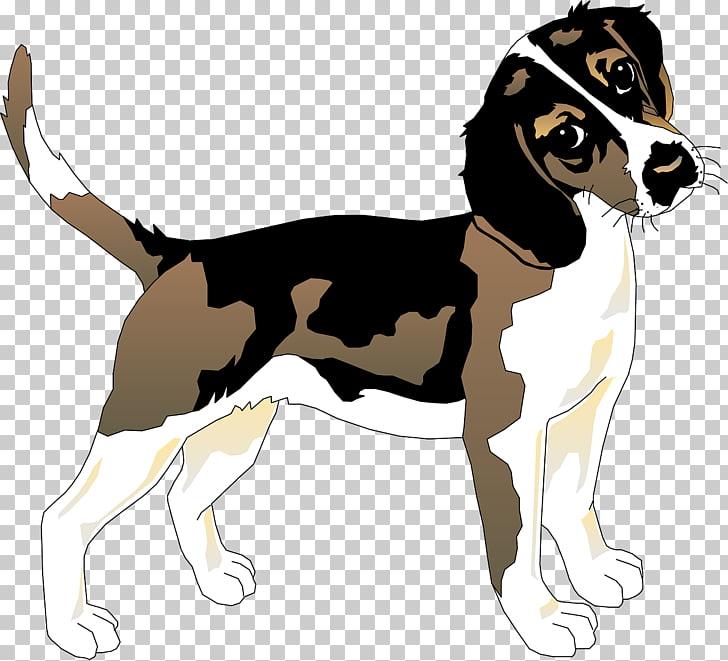 Beagle Basset Hound Siberian Husky Puppy, Loyal puppy PNG.