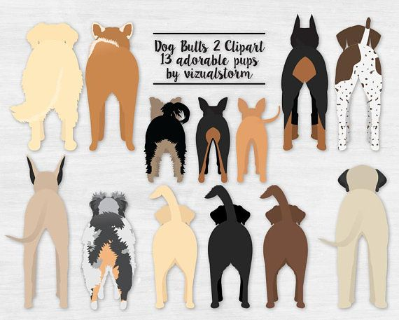 Dog Butts Clipart 2 Funny Dog Graphics Pet Clipart Labrador.