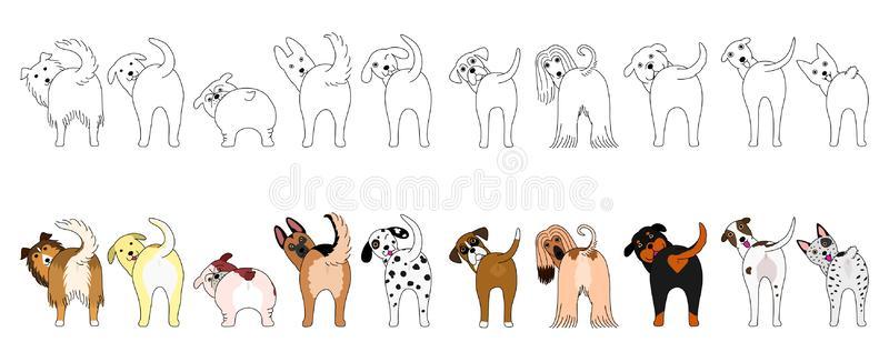 Dog Butts Stock Illustrations.