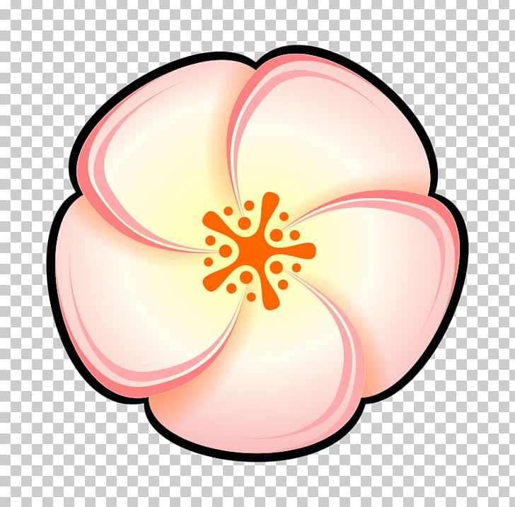 Peach Flower PNG, Clipart, Art, Circle, Color, Drawing.