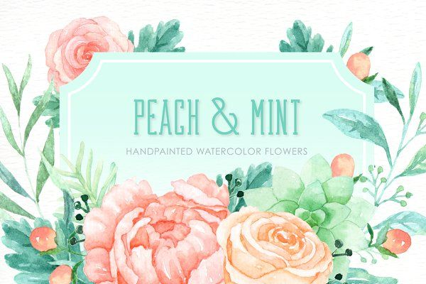 Peach and Mint Watercolor clipart.