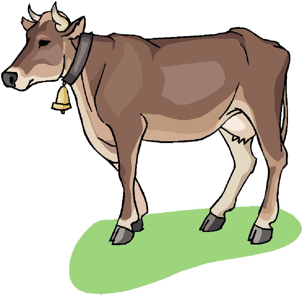 899 Cows free clipart.