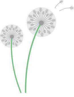 Dandelions clipart.