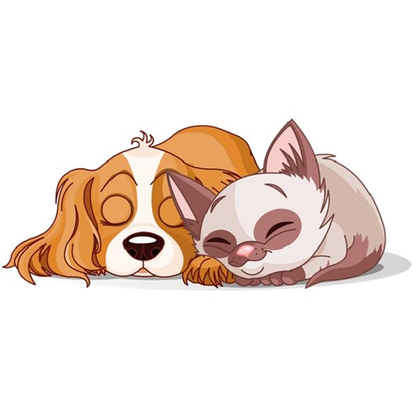 1058 Dog And Cat free clipart.