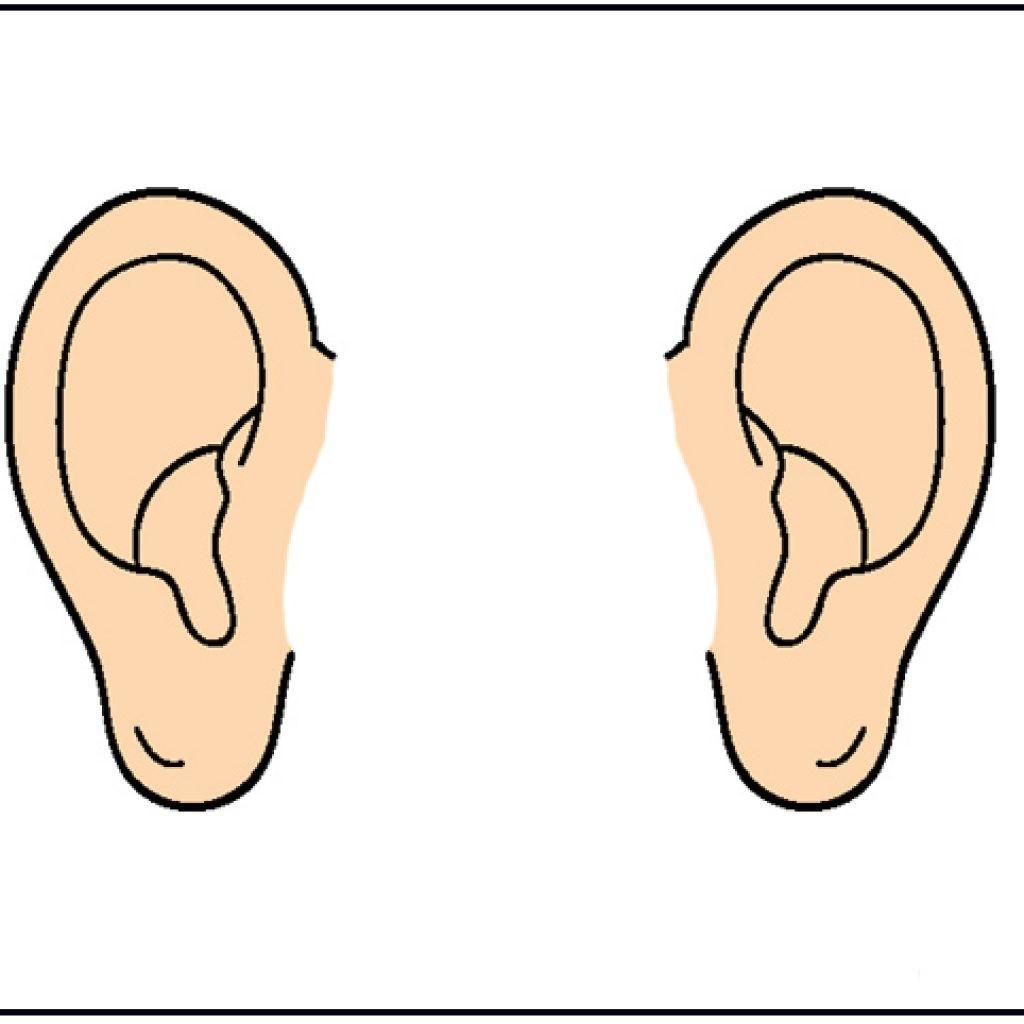 For Clipart Of Ear Cartoon 2.