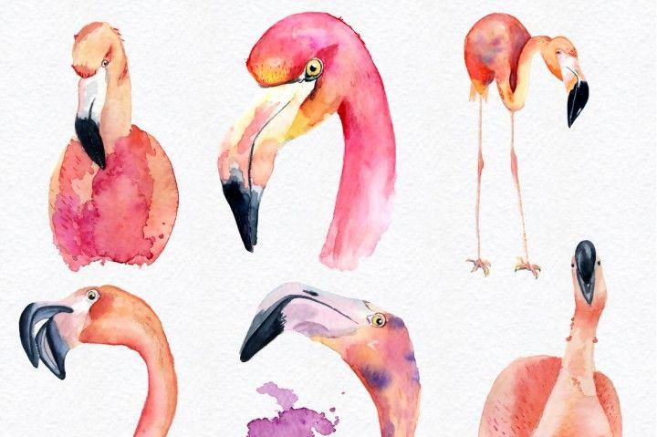 Watercolor flamingo clipart Tropical summer set. Vol.2 By.