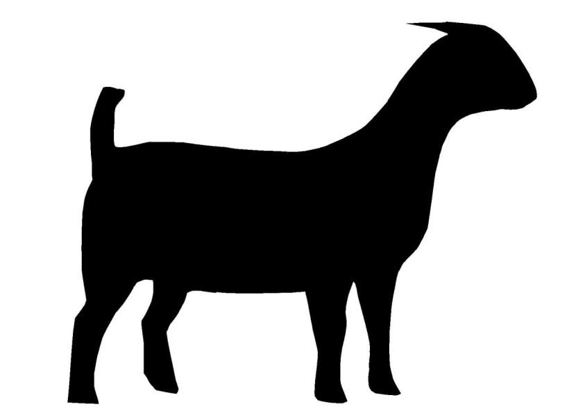 Boer goat clip art 2.