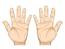 Two hands clipart 2 » Clipart Station.