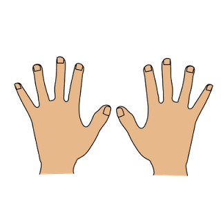 Only 2 hands clipart kid.