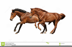 Clipart Horses Running.