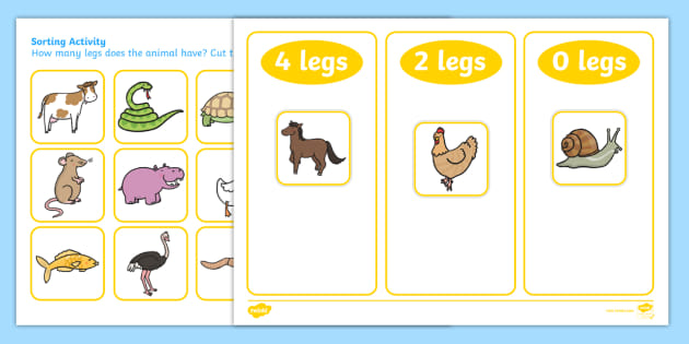 Animal Leg Sorting Activity.