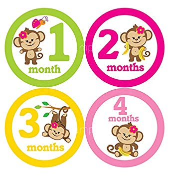 Amazon.com: Set of 12 Month 2 Month Baby Monkey Girl.
