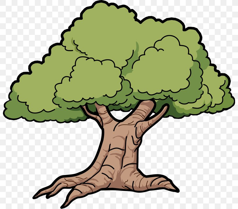 Oak Tree Clip Art, PNG, 800x719px, Oak, Area, Art, Artwork.