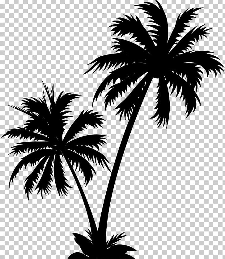 Graphics Palm Trees Illustration PNG, Clipart, Arecales.