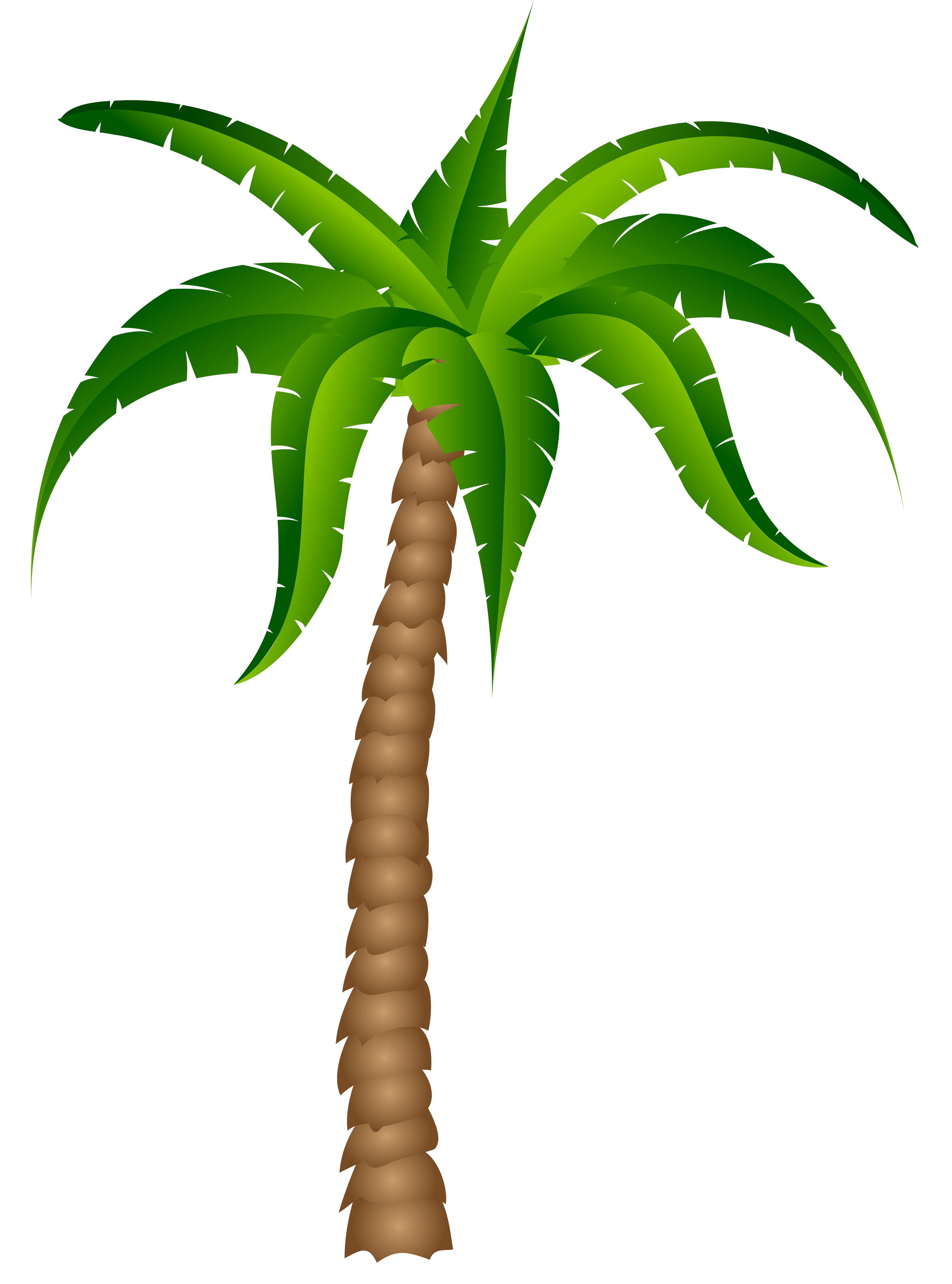 Palm Trees Clipart No Background.