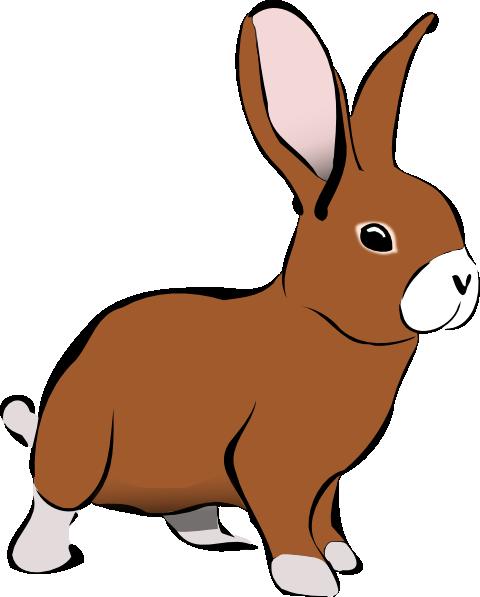 Rabbit clipart rabbit animals clip art downloadclipart org 2.
