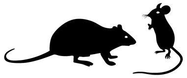 Black rat clipart 2.