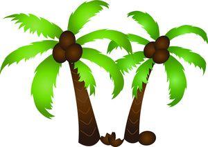 Coconut tree clipart kid 2.