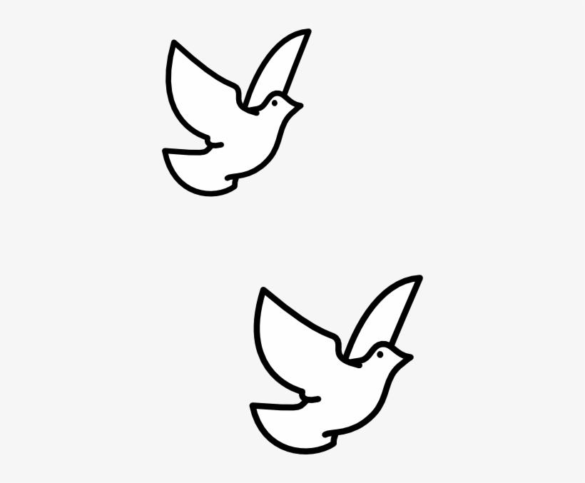 Drawn Turtle Dove Vector.