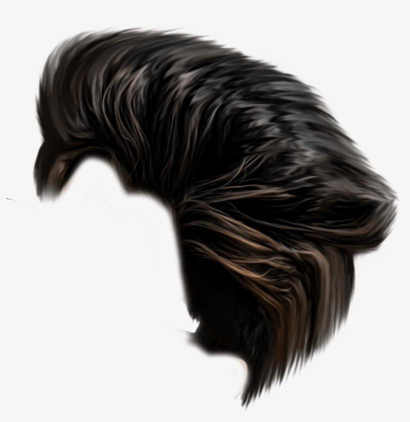200 Hair Png Zip.