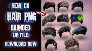 200 Hair Png Zip File Download.