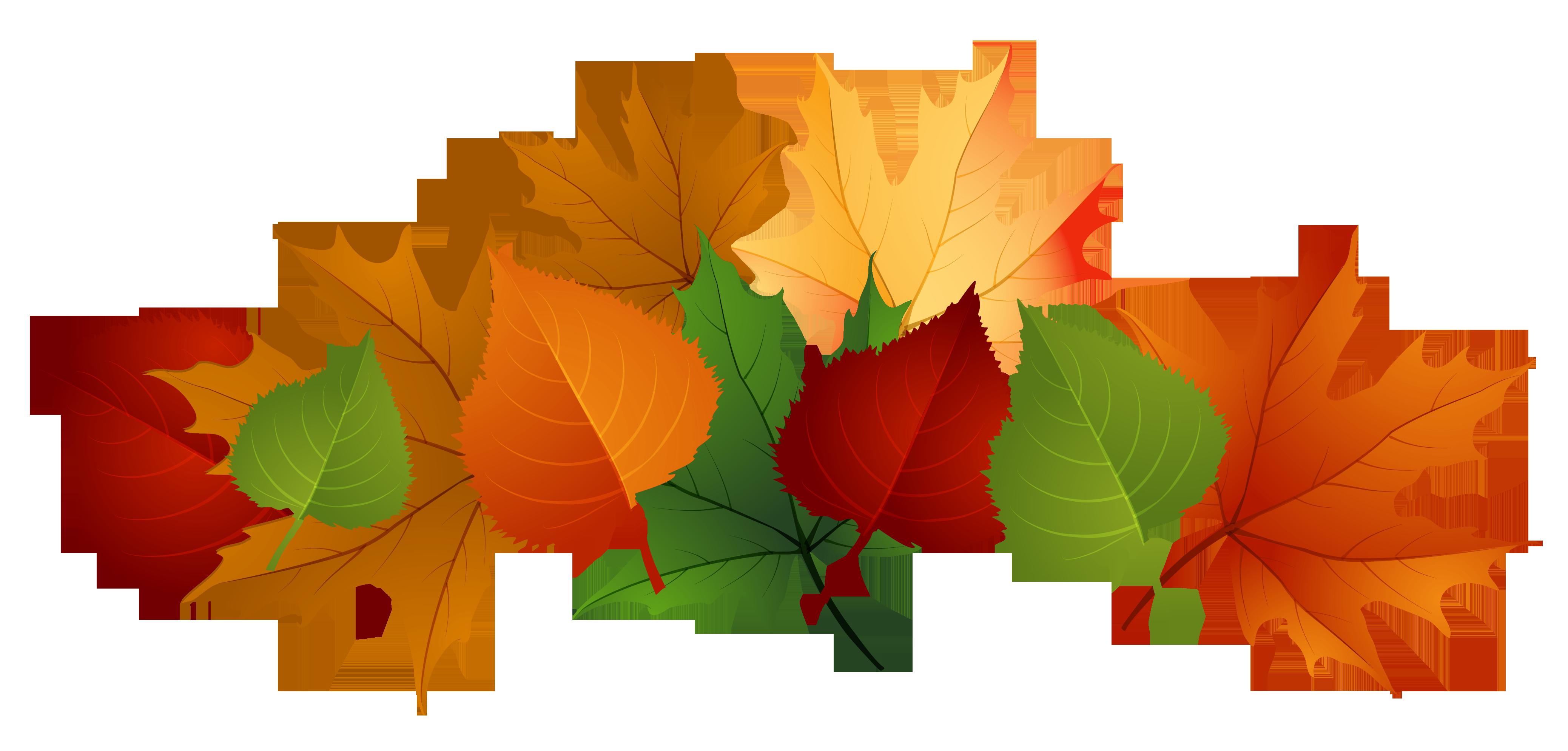 Fall leaf clip art 2.