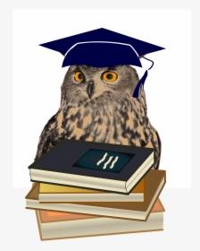 Graduation Clipart PNG Images, Free Transparent Graduation.