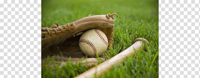 Spring training 2018 Major League Baseball season Arizona.
