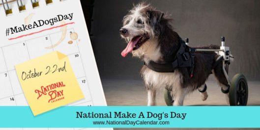 NATIONAL MAKE A DOG\'S DAY.