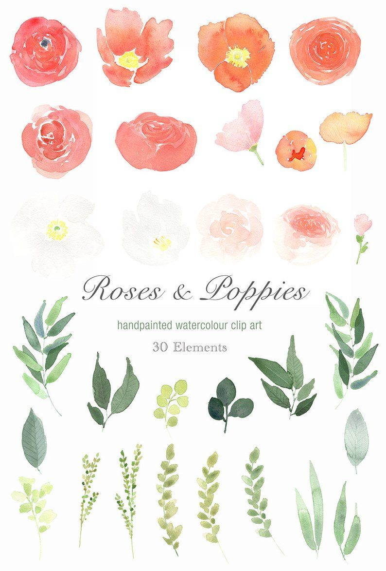 Watercolour Floral Clipart.
