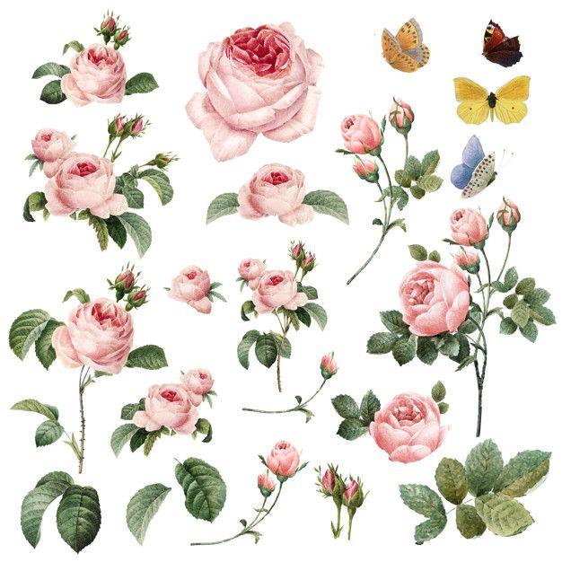 Free Printable flower flowers Art Clip Art clipart 2019.