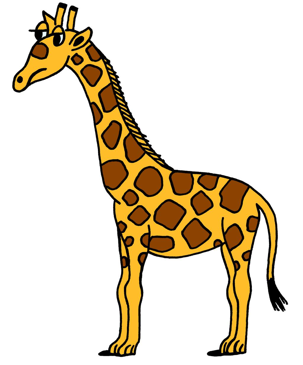 Giraffe Clipart Drawing Pictures 2392.