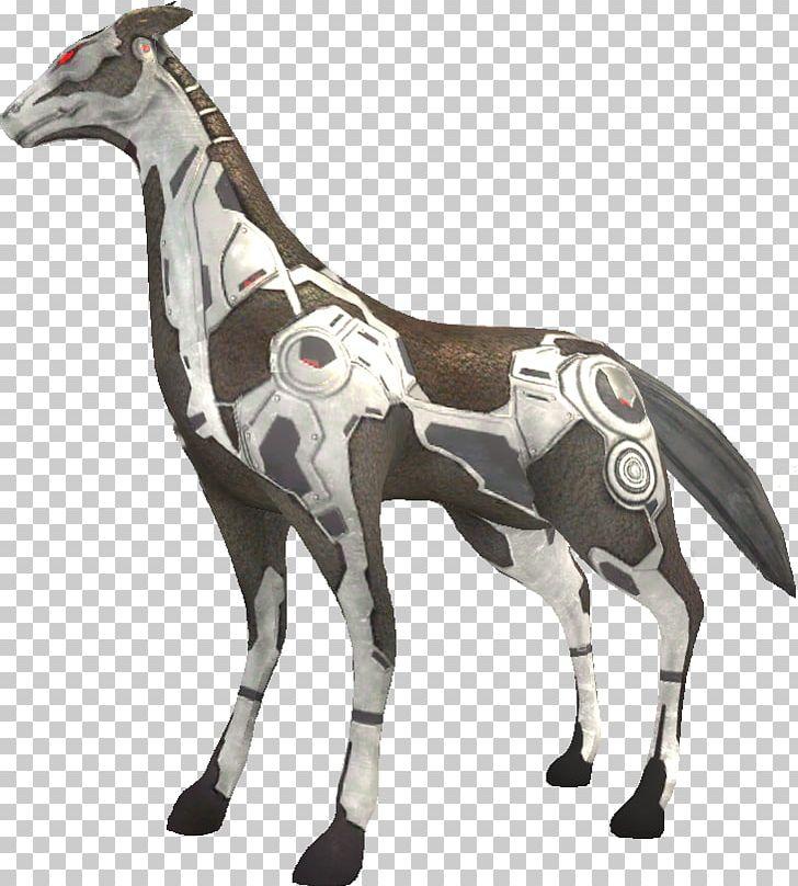 Giraffe Mustang Pack Animal Freikörperkultur Terrestrial.