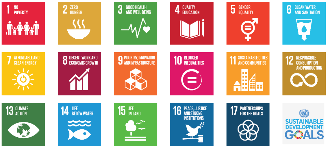 Can the SDGs be achieved by 2030?.