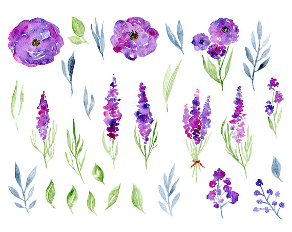 Watercolor Floral Clipart 29 Purple Violet Flowers Aquarelle.