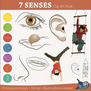 5 Senses / 7 Senses Clip Art Pack.