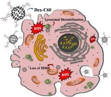 Toxicity of dextran stabilized fullerene C60 against C6.