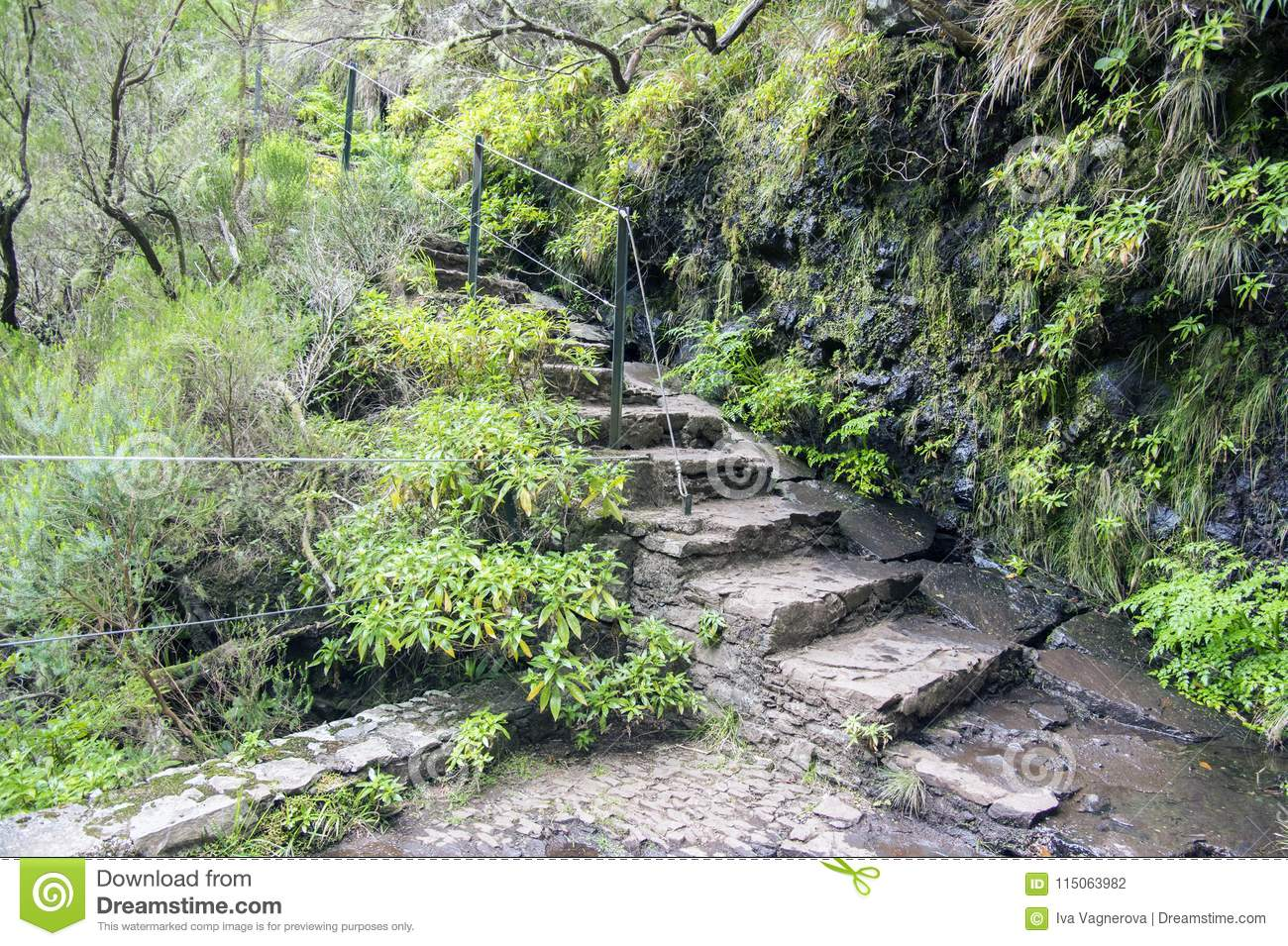Stairs To Levada Das 25 Fontes, Touristic Hiking Trail, Rabacal.