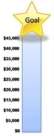 Fundraiser goal chart /.